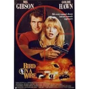 Bird On A Wire (1990) (Vietsub) - Chú Chim Trên Dây