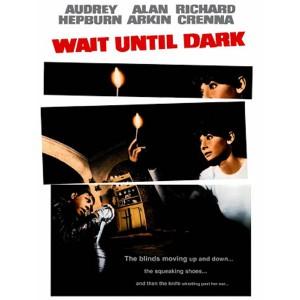 Wait Until Dark (1967) (Vietsub) - Chờ Đến Đêm Tối