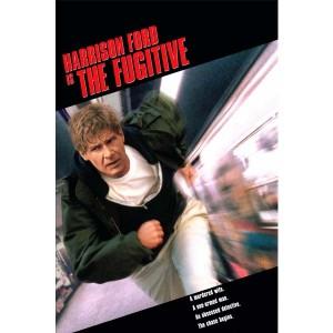 The Fugitive (1993) (Vietsub) - Kẻ Đào Tẩu
