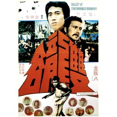 Kungfu Of TaiKwando (1974)