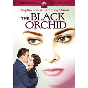 The Black Orchid (1959) (Thuyết Minh) - Phong Lan Đen