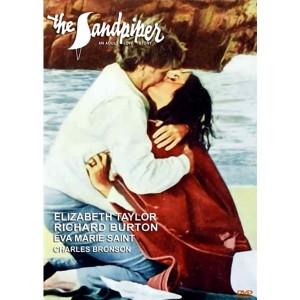 The Sandpiper (1965) (Vietsub)