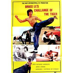 Challenge Of The Tiger (1980) (Vietsub) - Thách Thức Mãnh Hổ